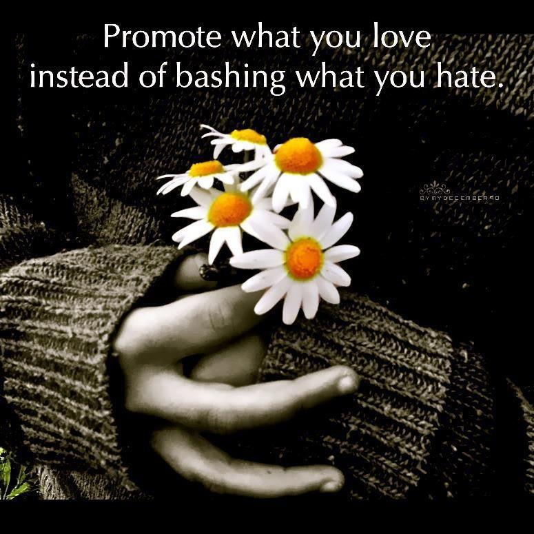 Promote what you love instead of bashing what you hate