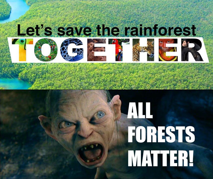All forests matter!